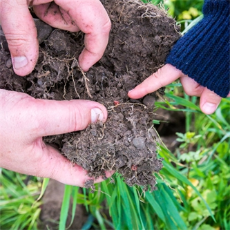 Sustainability coming from the ground up