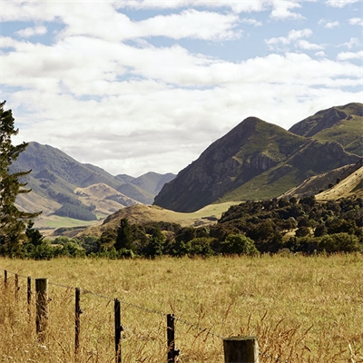 Farm-land-image-website-web