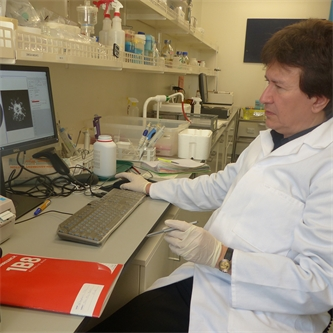 New device could help identify disease outbreaks
